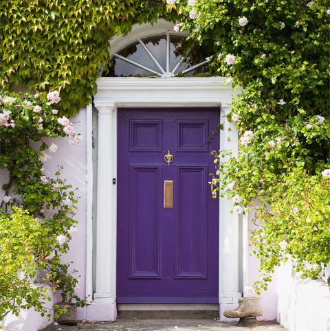 What does your front door colour say about you for 10 downing street front door paint