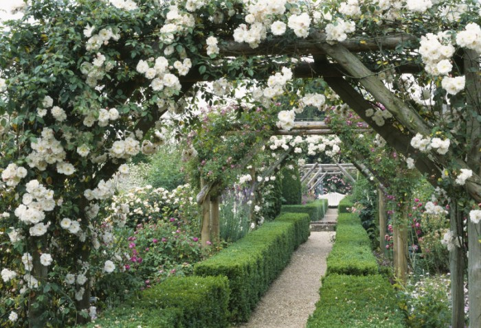 Best uk gardens to visit for White house rose garden design