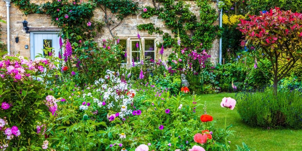 How to grow a cottage garden for Cottage garden design