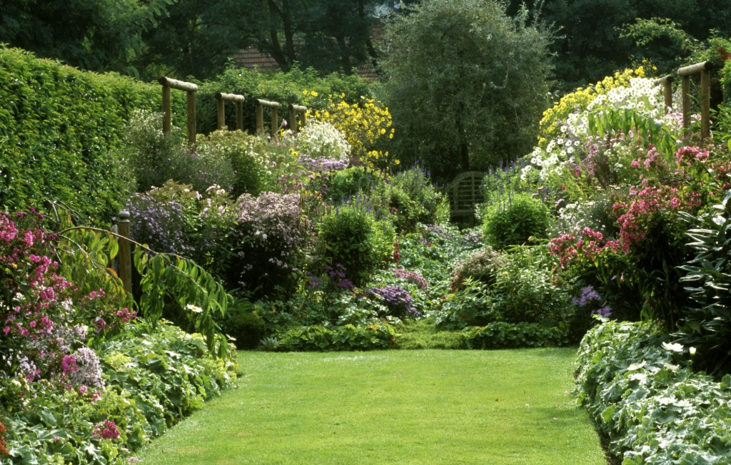 How to grow and english country garden for Country garden ideas for small gardens