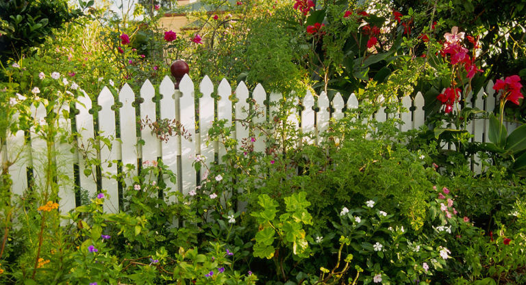 the top  garden design ideas to make the best of your outdoor space, Natural flower