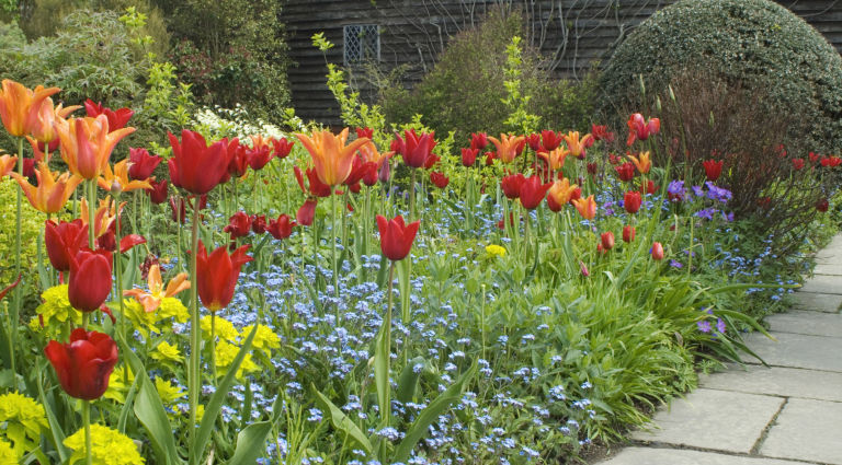 garden design ideas flower border - Garden Designs Ideas
