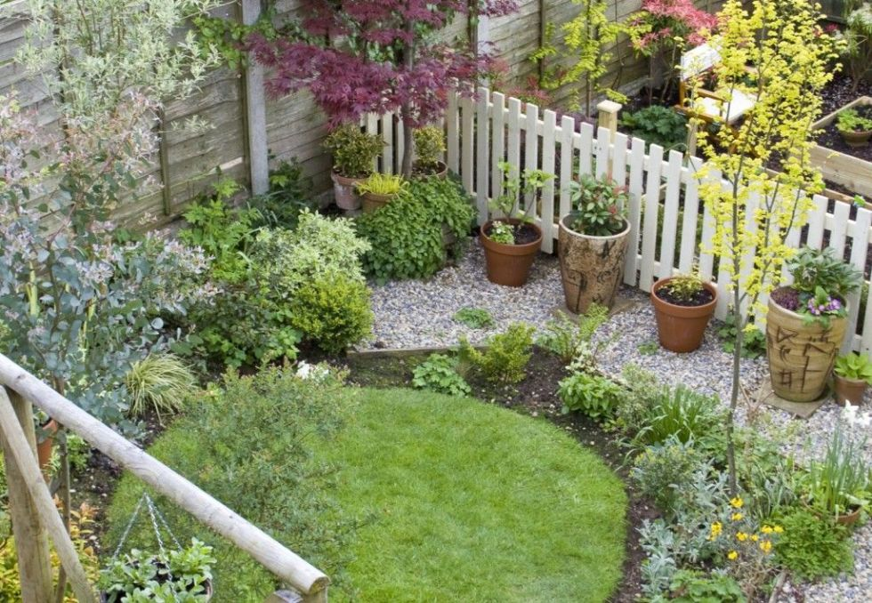 garden ideas on a budget lawn - Garden Examples Photos