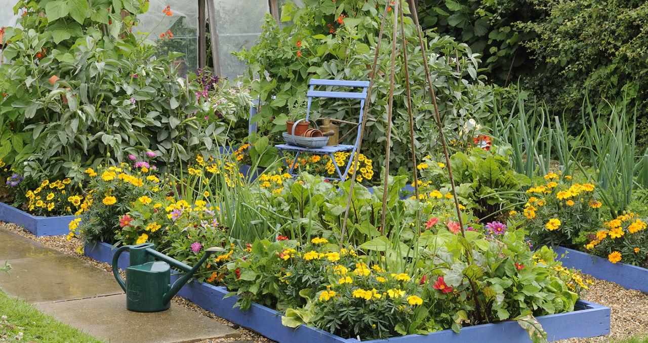 garden-designs-modern-cottage