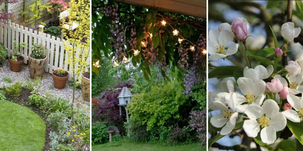 5 Cheap Garden Ideas Best Gardening On A Budget