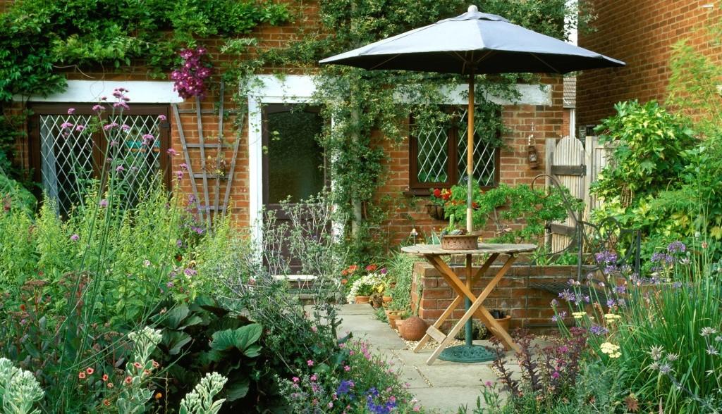 gardening tips for a successful garden