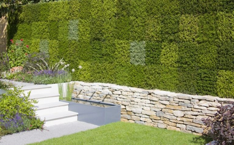 contemporary garden design greenery