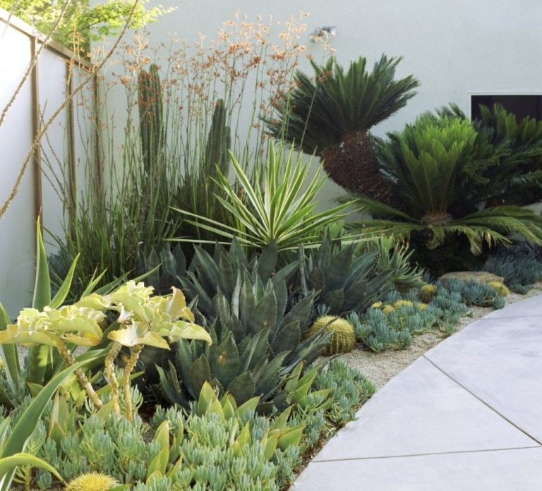 Contemporary Garden Design Boarder