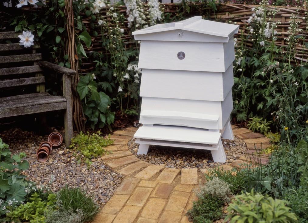 bees-beehive-garden