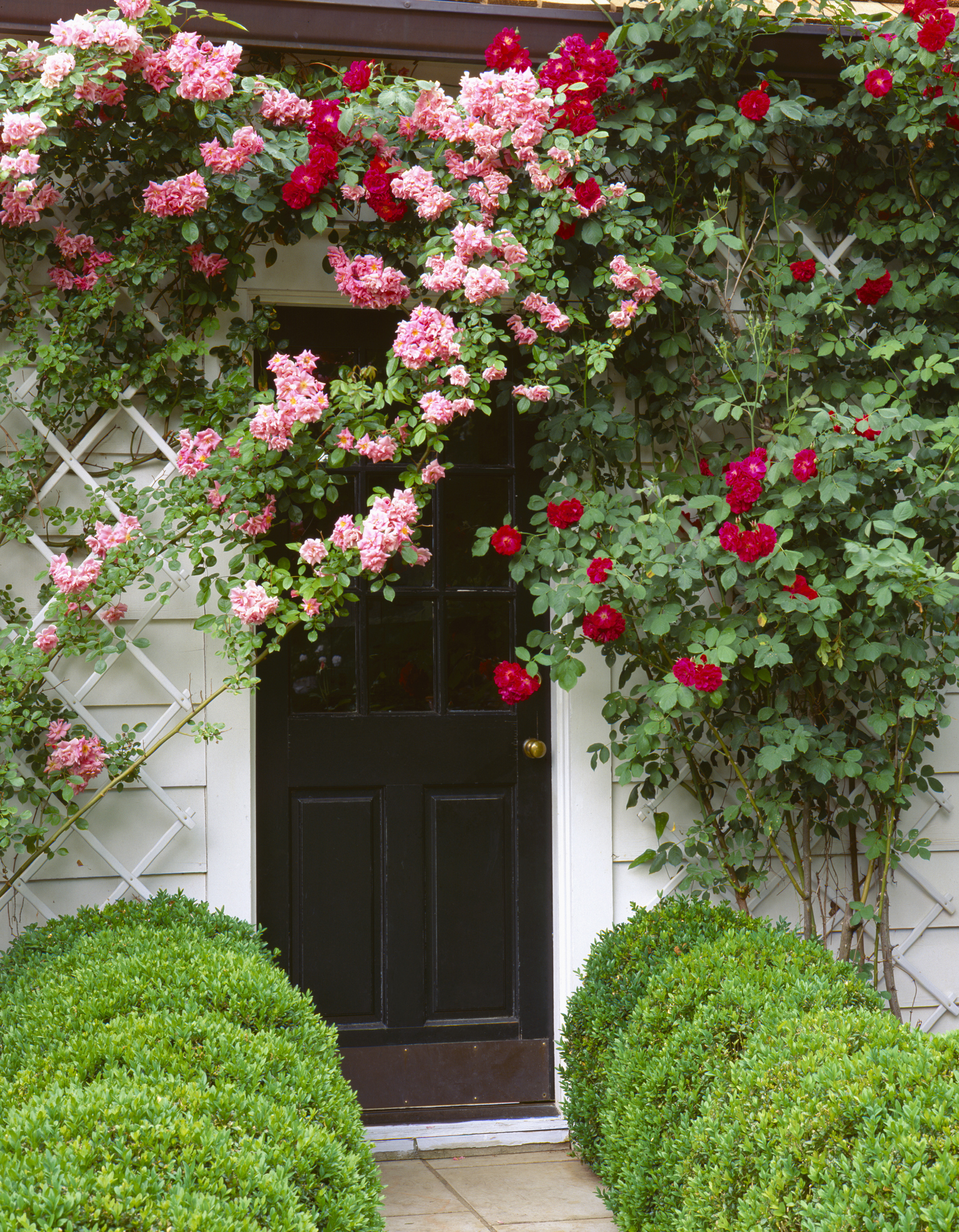 How To Make Your Front Garden Look Presentable For Summer