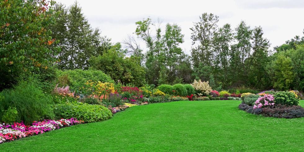 Gardening Green Lawn
