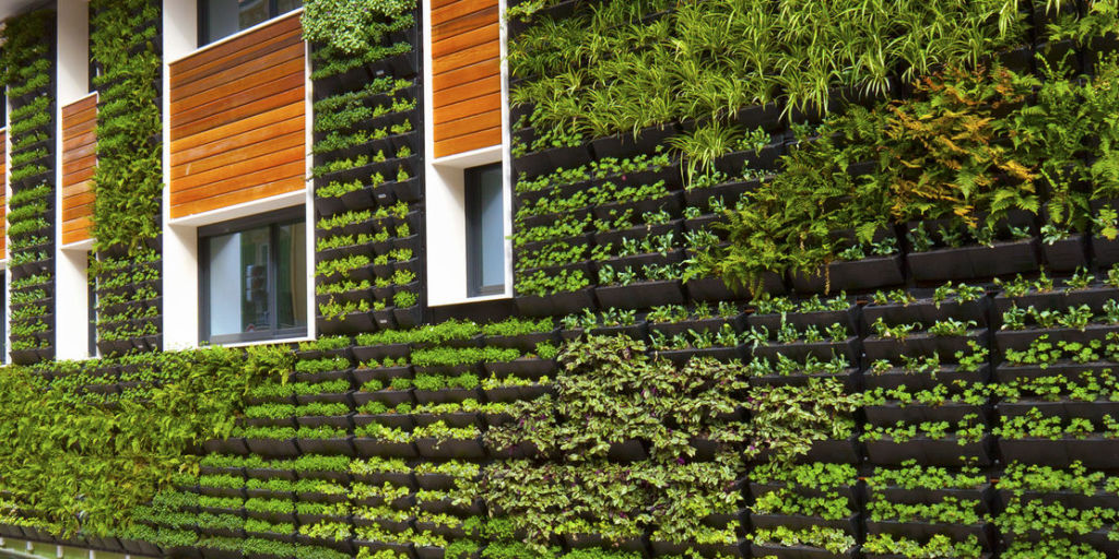Vertical gardens how to create a living wall - How to make a living wall ...