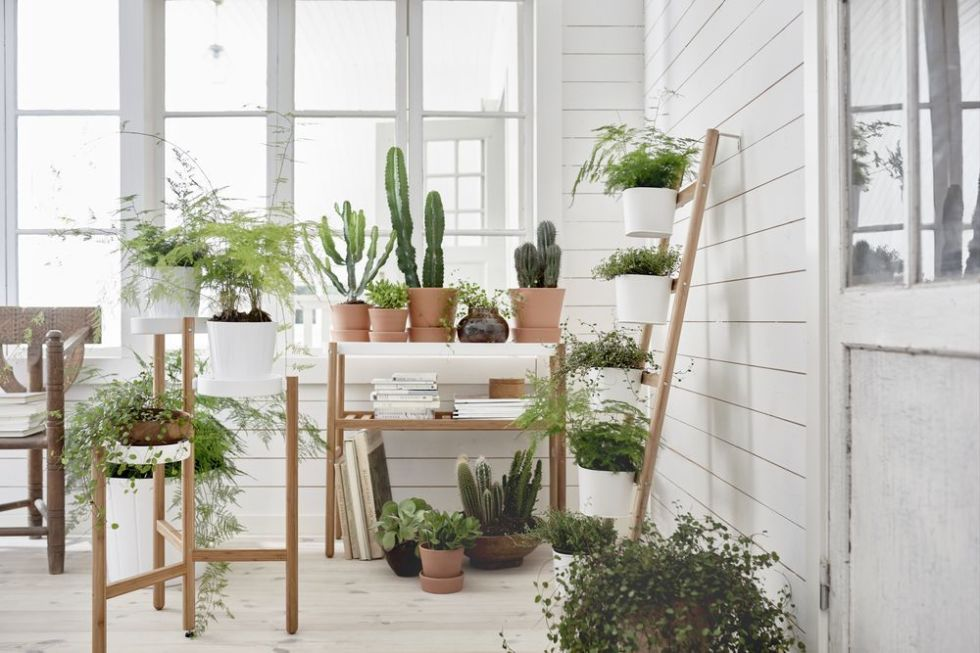 ikea plant stands from 25 ideal for a small conservatory