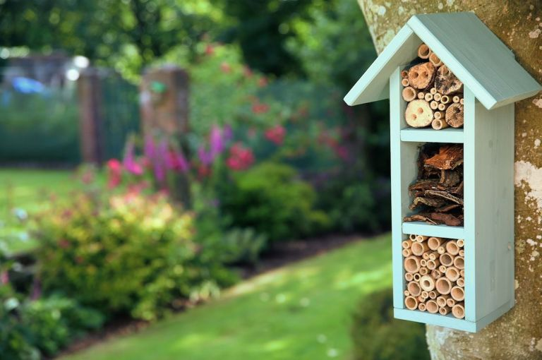 Fascinating Alys Fowlers  Top Tips To Attract Bees To Your Garden With Outstanding Wickes  Bee Hotel With Amazing Hillier Gardens Events Also Hose Garden In Addition High Beeches Gardens And Marina Gardens Northampton As Well As Garden Green Beans Additionally The Boulevard Covent Garden From Housebeautifulcouk With   Outstanding Alys Fowlers  Top Tips To Attract Bees To Your Garden With Amazing Wickes  Bee Hotel And Fascinating Hillier Gardens Events Also Hose Garden In Addition High Beeches Gardens From Housebeautifulcouk