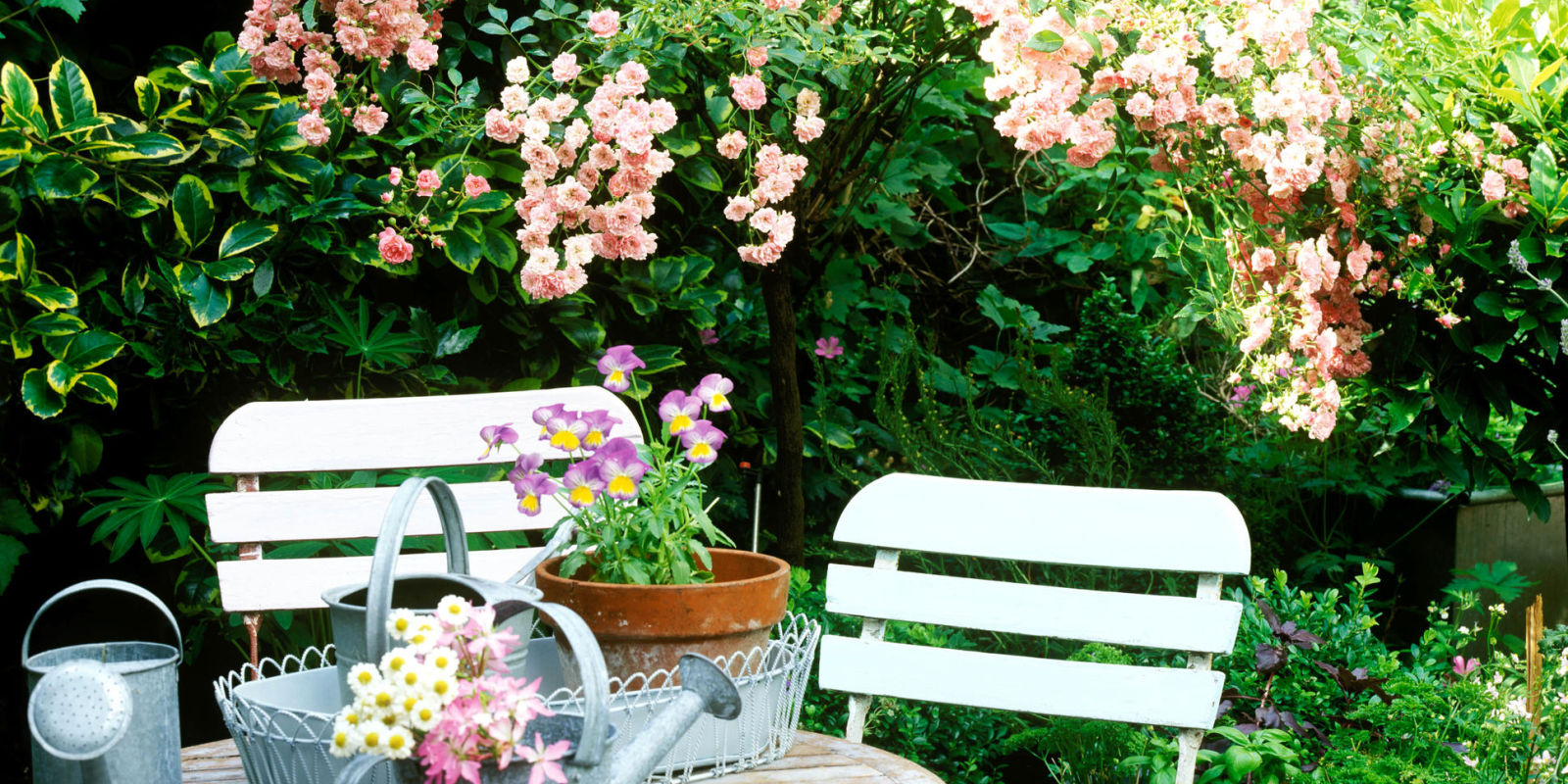 garden designs for small gardens picture