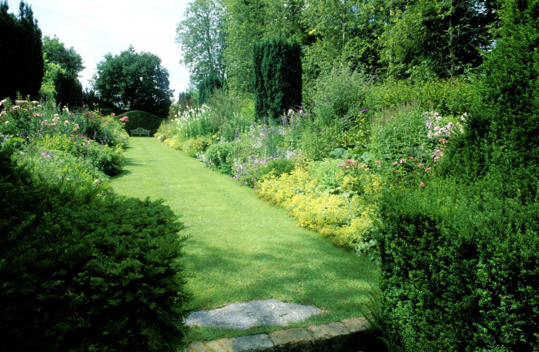 long grass path leading to garden bench with borders on each side