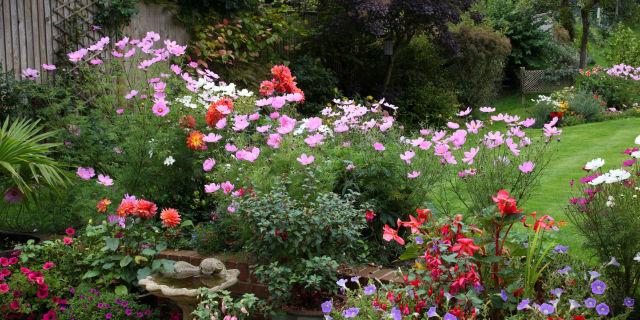Pictures Of A Garden housebeautiful magazine | garden