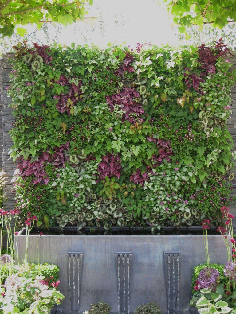Green, vertical, living wall