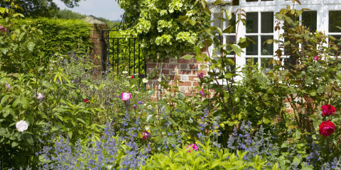 Border infront of house with view to gate, The Lowes Garden, The Coach House, Haslemere, Surrey, UK