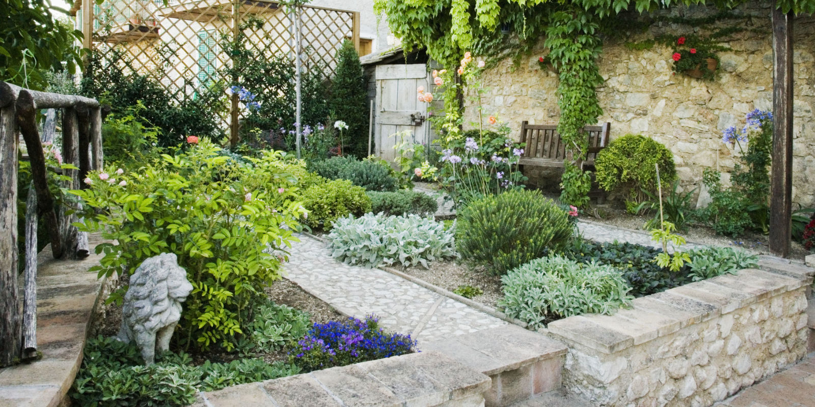 how to get rid of a large unwanted tree in your garden