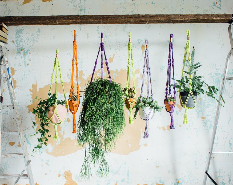 plant trend how to make a macram plant hanger. Black Bedroom Furniture Sets. Home Design Ideas