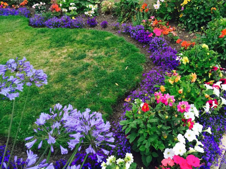 Multi Coloured Flower Bed In Garden