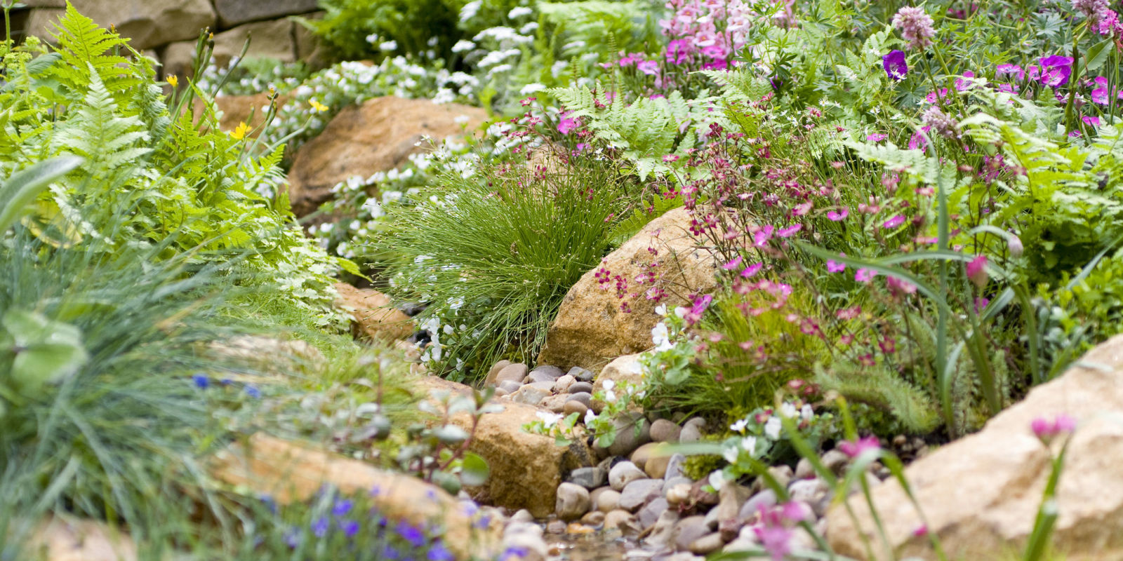 Chelsea flower show 2017 the winning formula revealed for Chelsea flower show garden designs