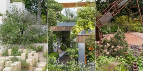 Chris beardshaw wins people 39 s choice award at the rhs Winner chelsea flower show 2017