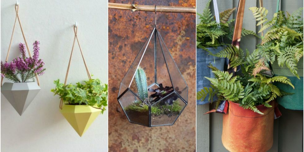 Pictures of hanging plants indoors for Ways to hang plants inside