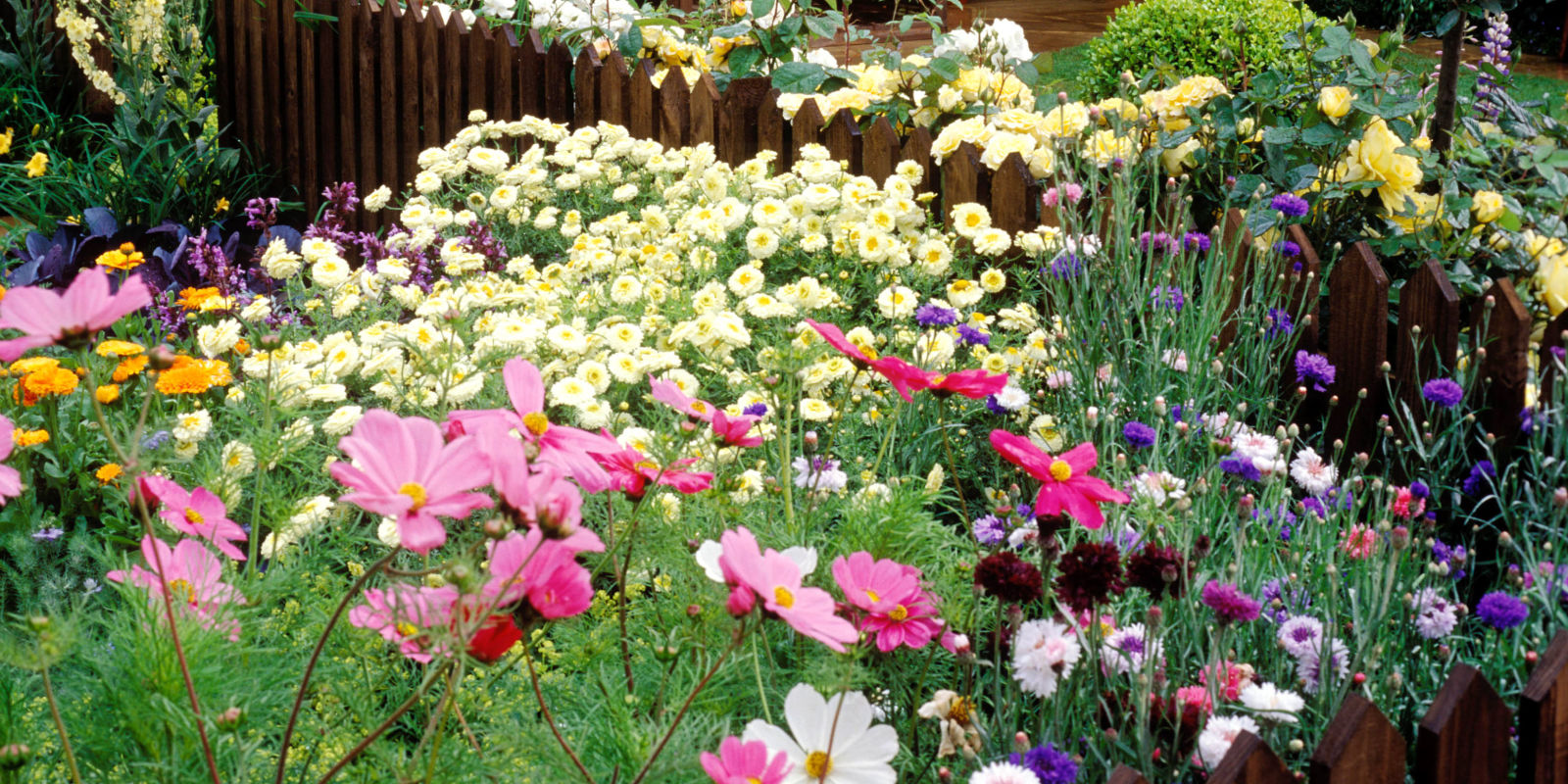 17 things gardeners will understand if they 39 re obsessed for Design in garden