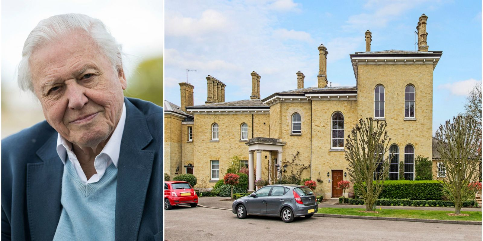 Sir David Attenborough 39 S Family Mansion Converted Into