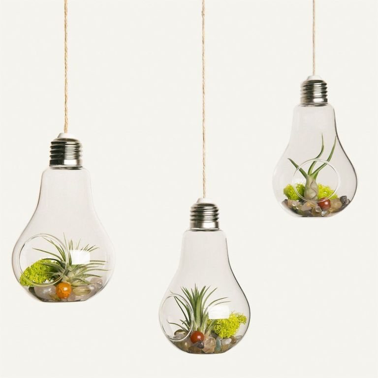 Mkouo 3 Pack Light Bulb Hanging Planter