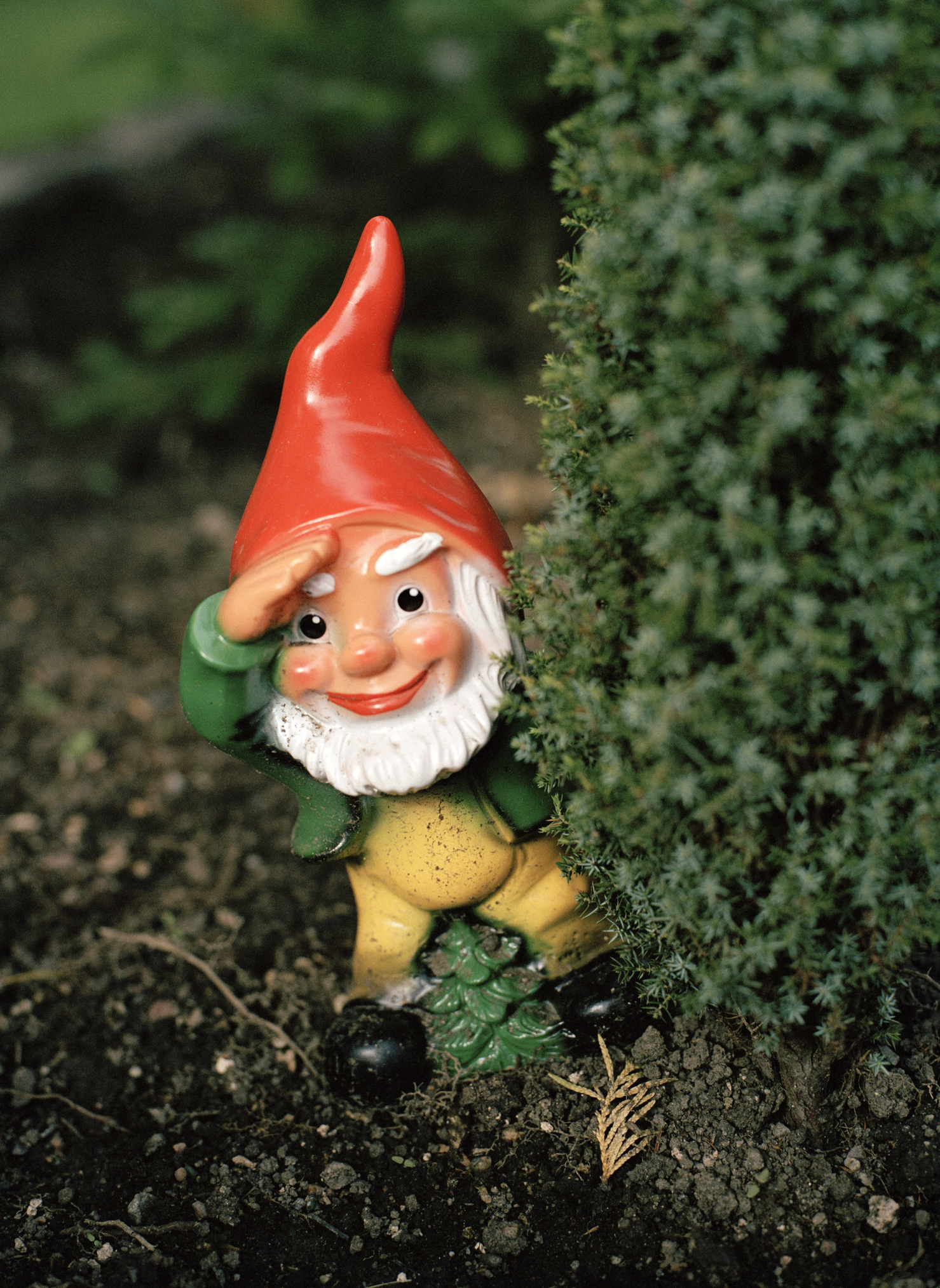 Www Garden Gonme: Sales Of Garden Gnomes Rose By 42% This Year, Reveals EBay